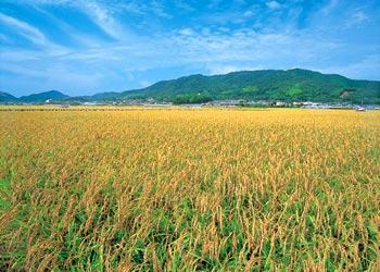 日高町へのアクセス | 和歌山県 ...